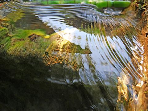 macrographie d'eau de Laurent Boucher